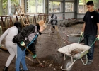 Bulgarien, Irak und Polen zu Gast im TEUPE Lern- und Erlebnisgarten
