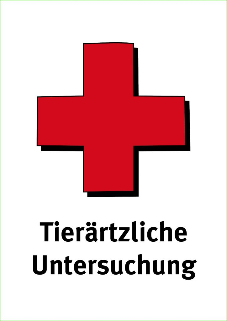 Partnervermittlung berlin mitte